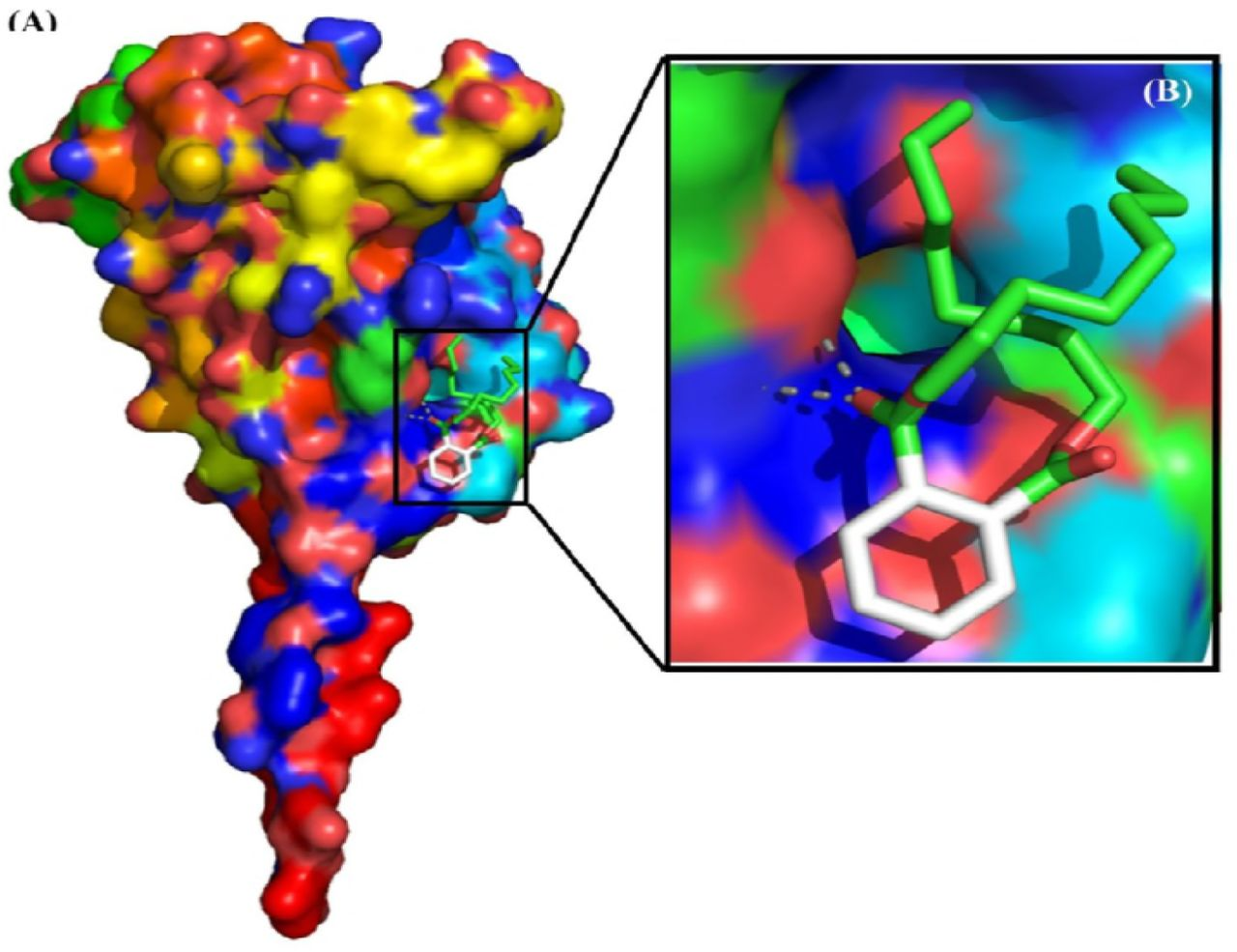 Antiviral viral compound from Streptomyces ghanaensis like strain