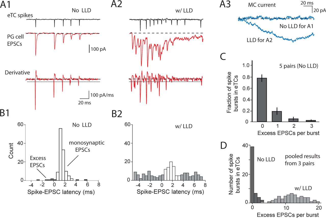 Thresholding of sensory inputs by extrasynaptic glutamate receptors