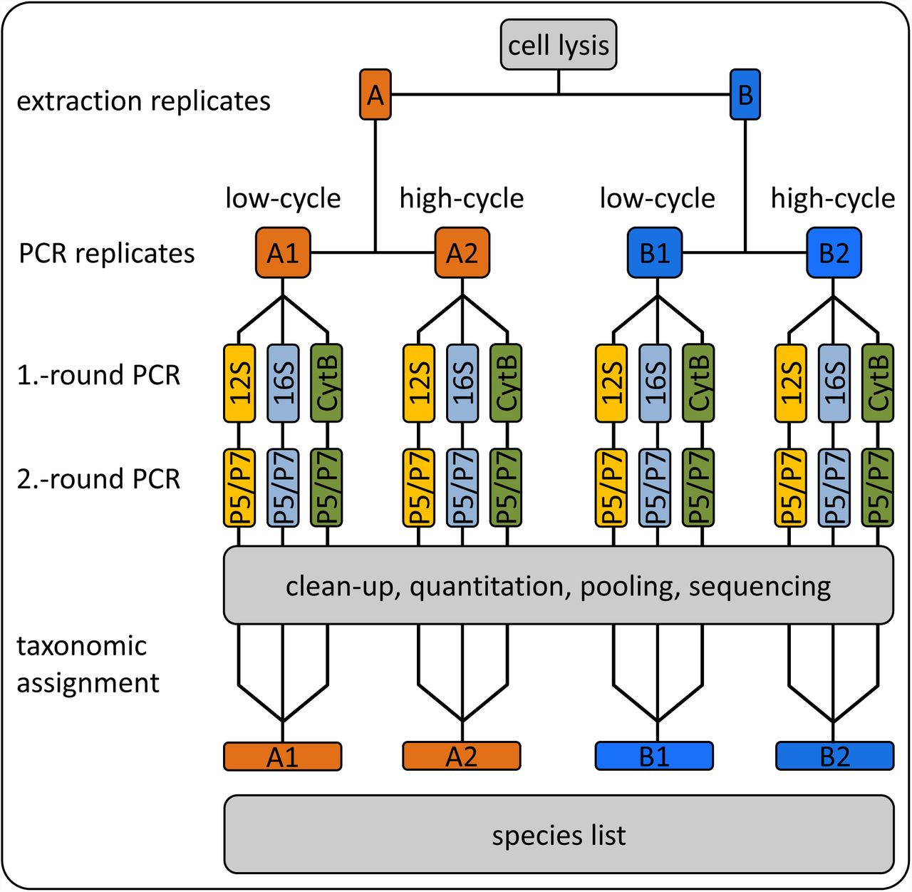 An efficient and improved laboratory workflow and tetrapod