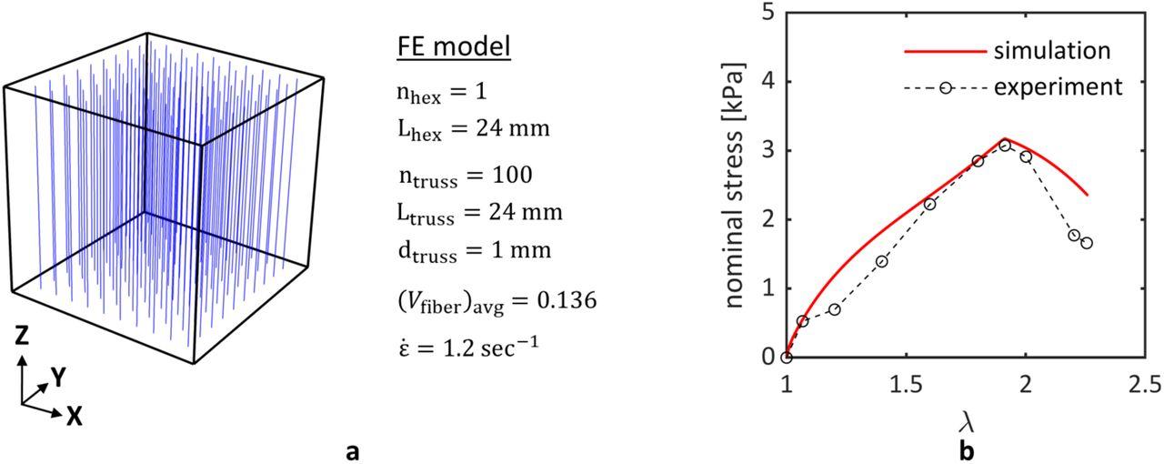 Computation of history-dependent mechanical damage of axonal