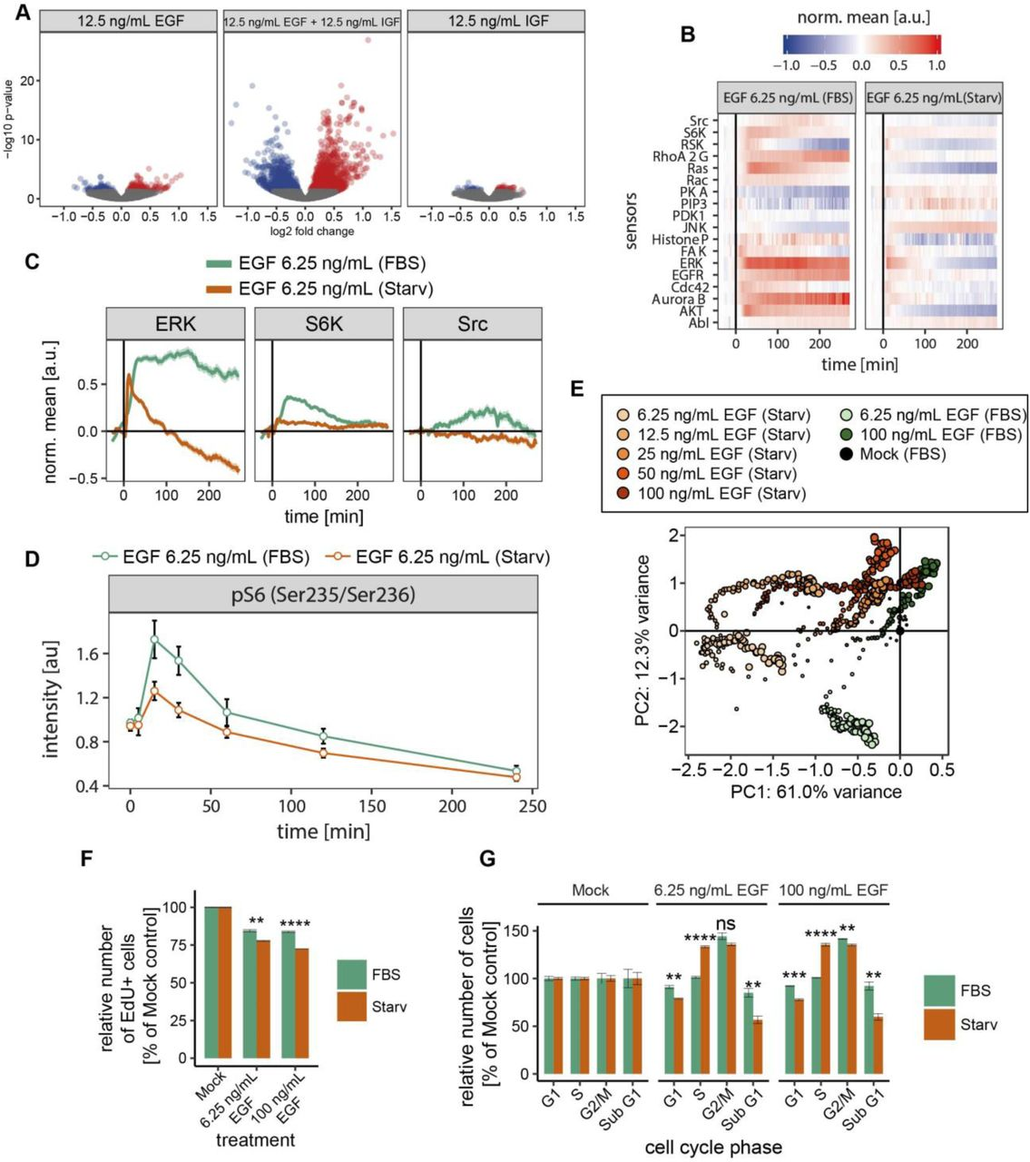 A combinatorial extracellular code tunes the intracellular ... on