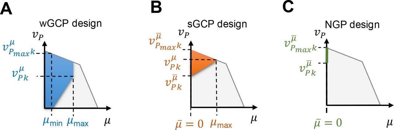 Multiobjective Strain Design: A Framework for Modular Cell