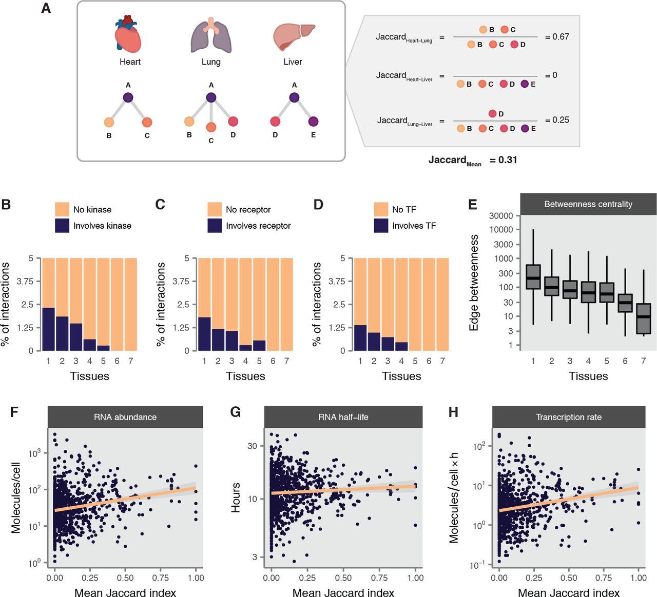 An atlas of protein-protein interactions across mammalian tissues