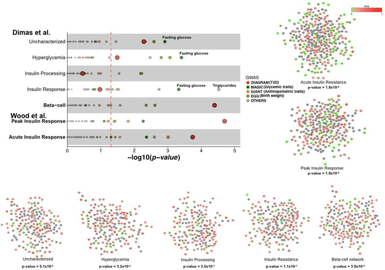 Developing a network view of type 2 diabetes risk pathways