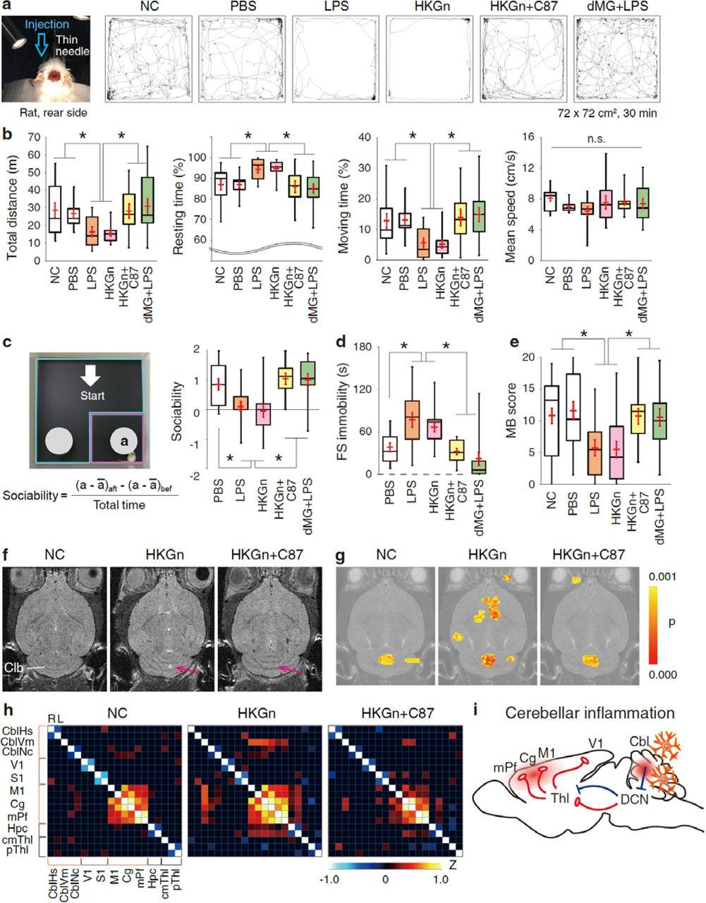 Microglia-triggered hyperexcitability in the cerebellum depresses