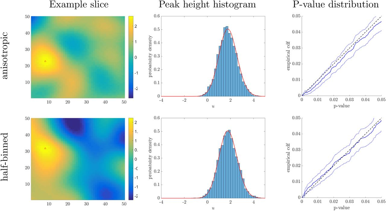 Peak p-values and false discovery rate inference in