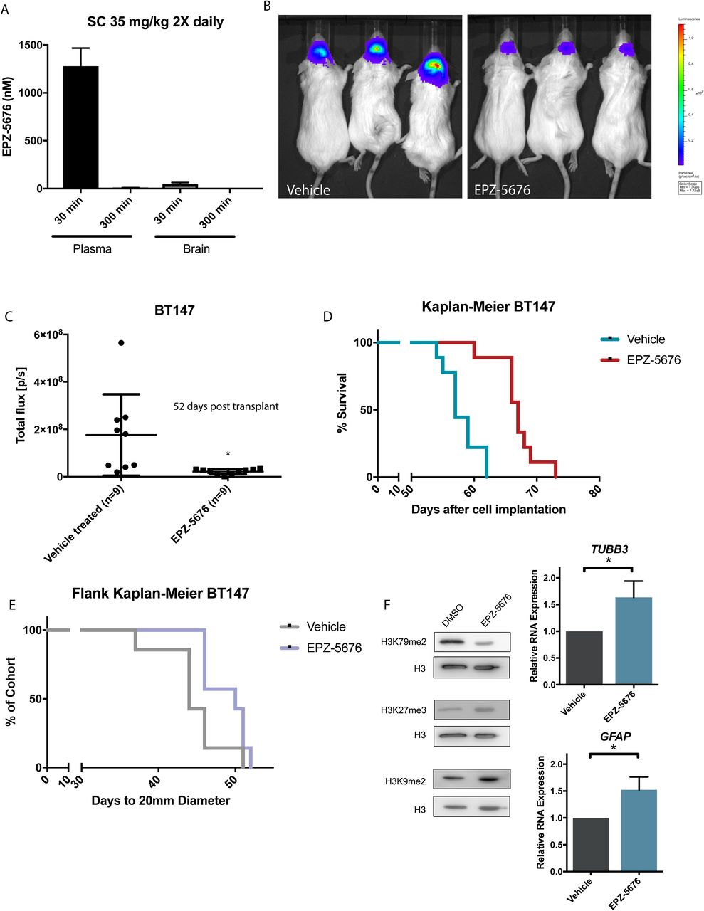 The functional genomic circuitry of human glioblastoma stem cells