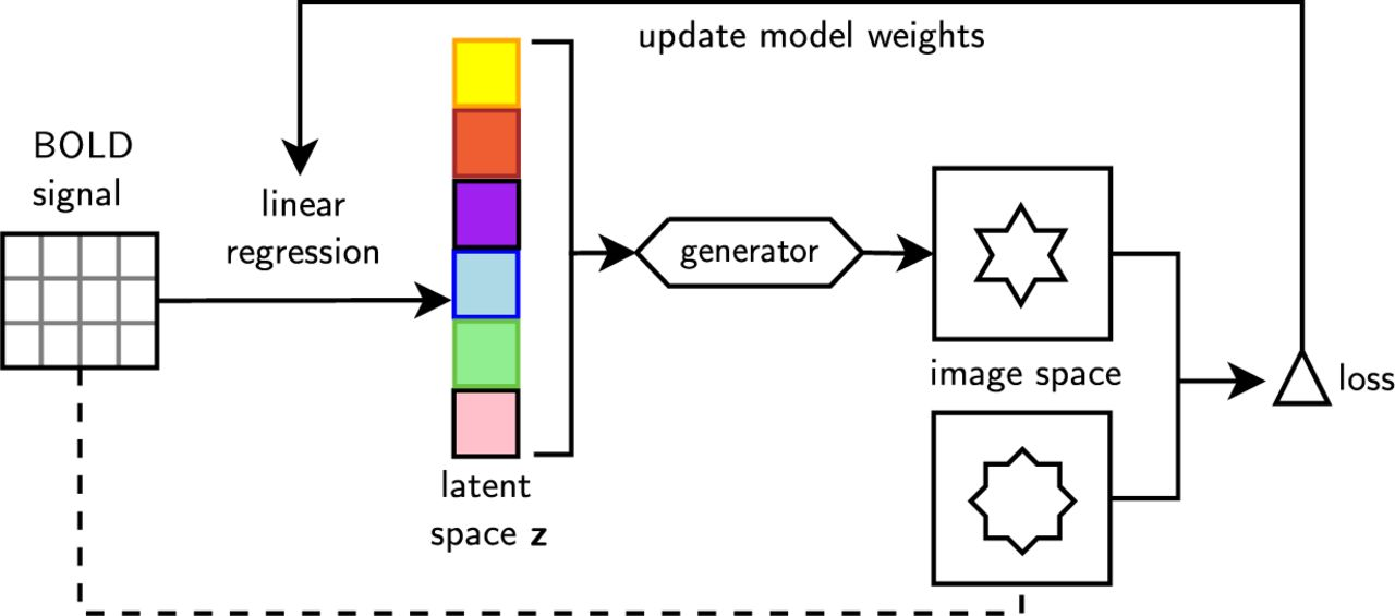 Generative adversarial networks for reconstructing natural