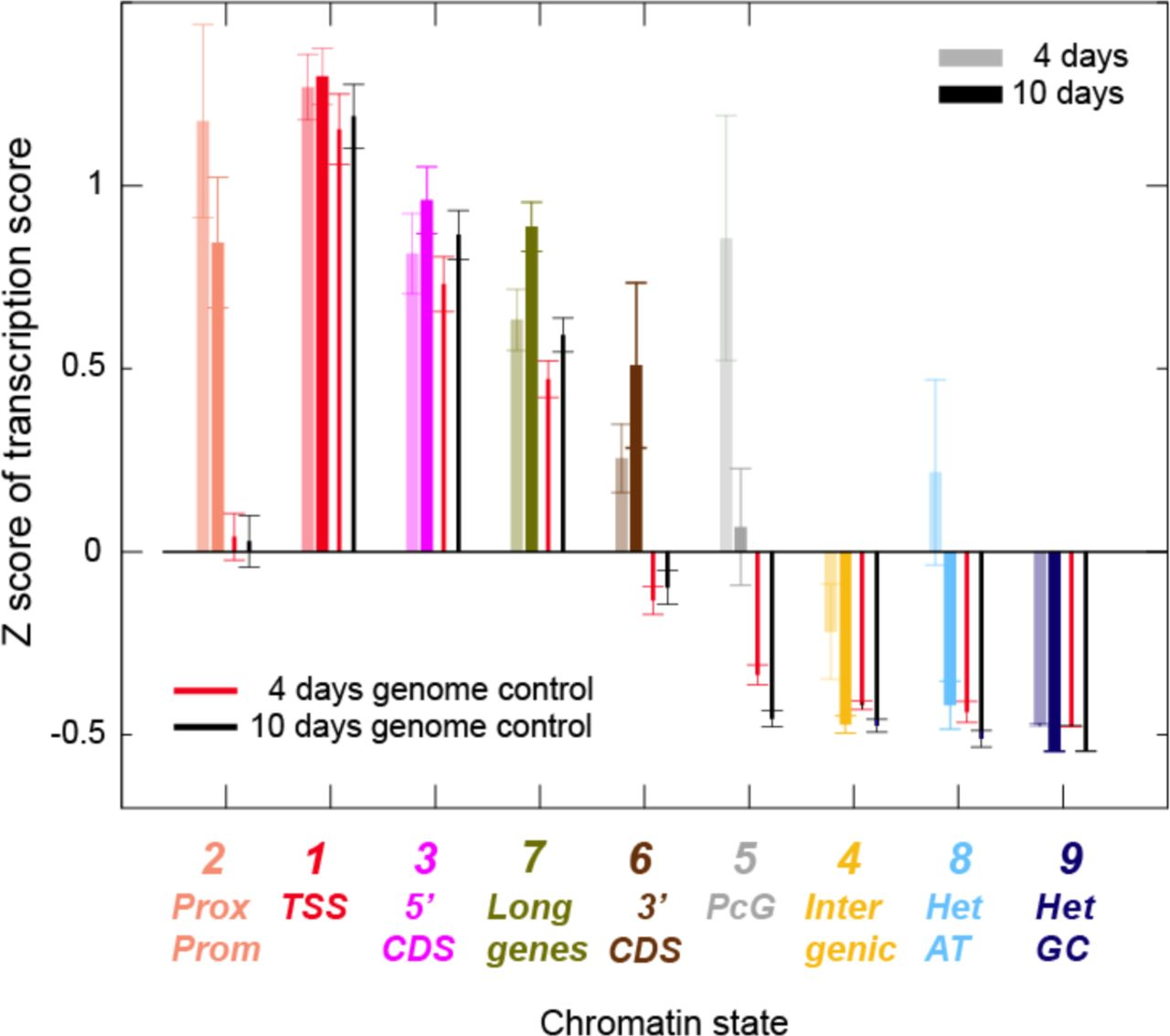 Differences in firing efficiency, chromatin and transcription
