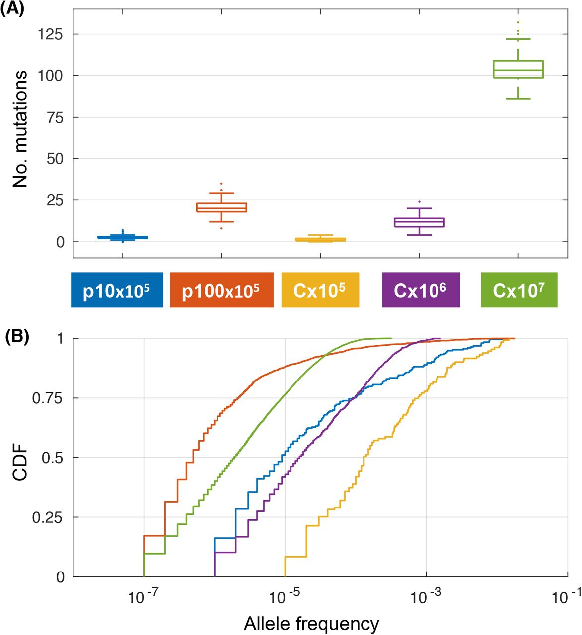 Segregational drift and the interplay between plasmid copy number