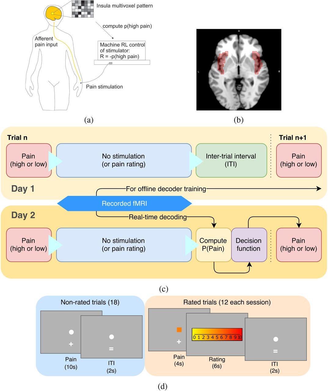 Endogenous controllability of closed-loop brain-machine
