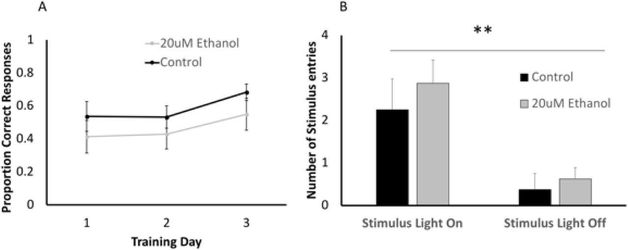 Moderate developmental alcohol exposure reduces repetitive