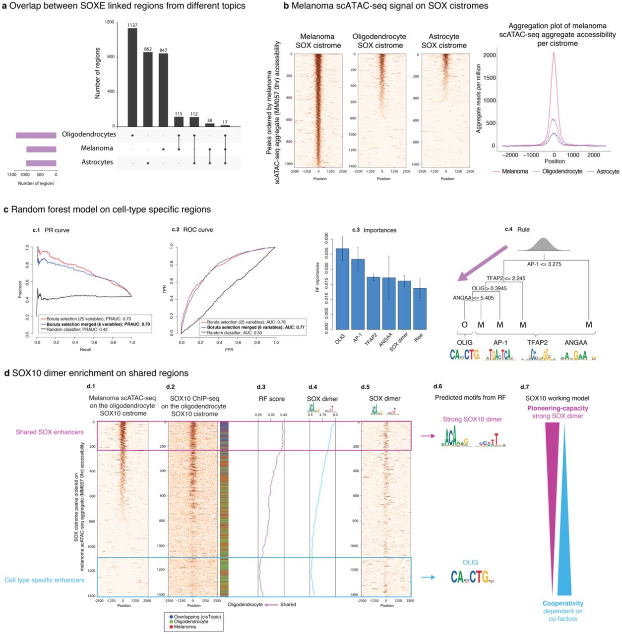 Cis-topic modelling of single-cell epigenomes | bioRxiv