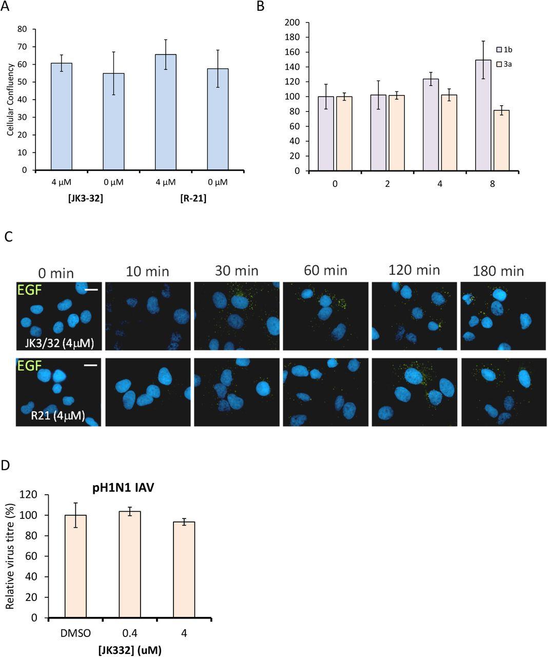 Targeting hepatitis C virus p7 channel activity reveals