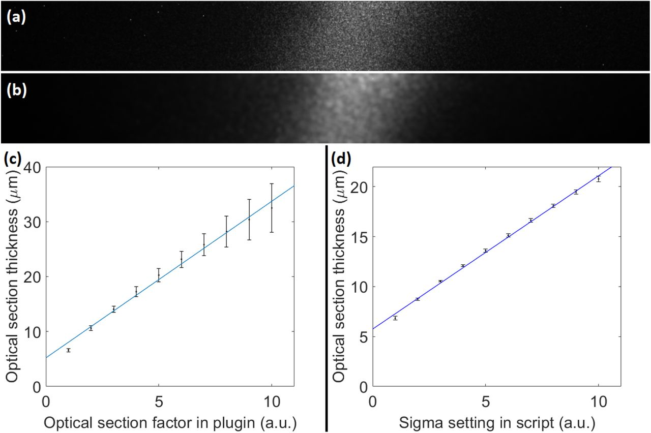 Fast Optical Sectioning for Widefield Fluorescence Mesoscopy