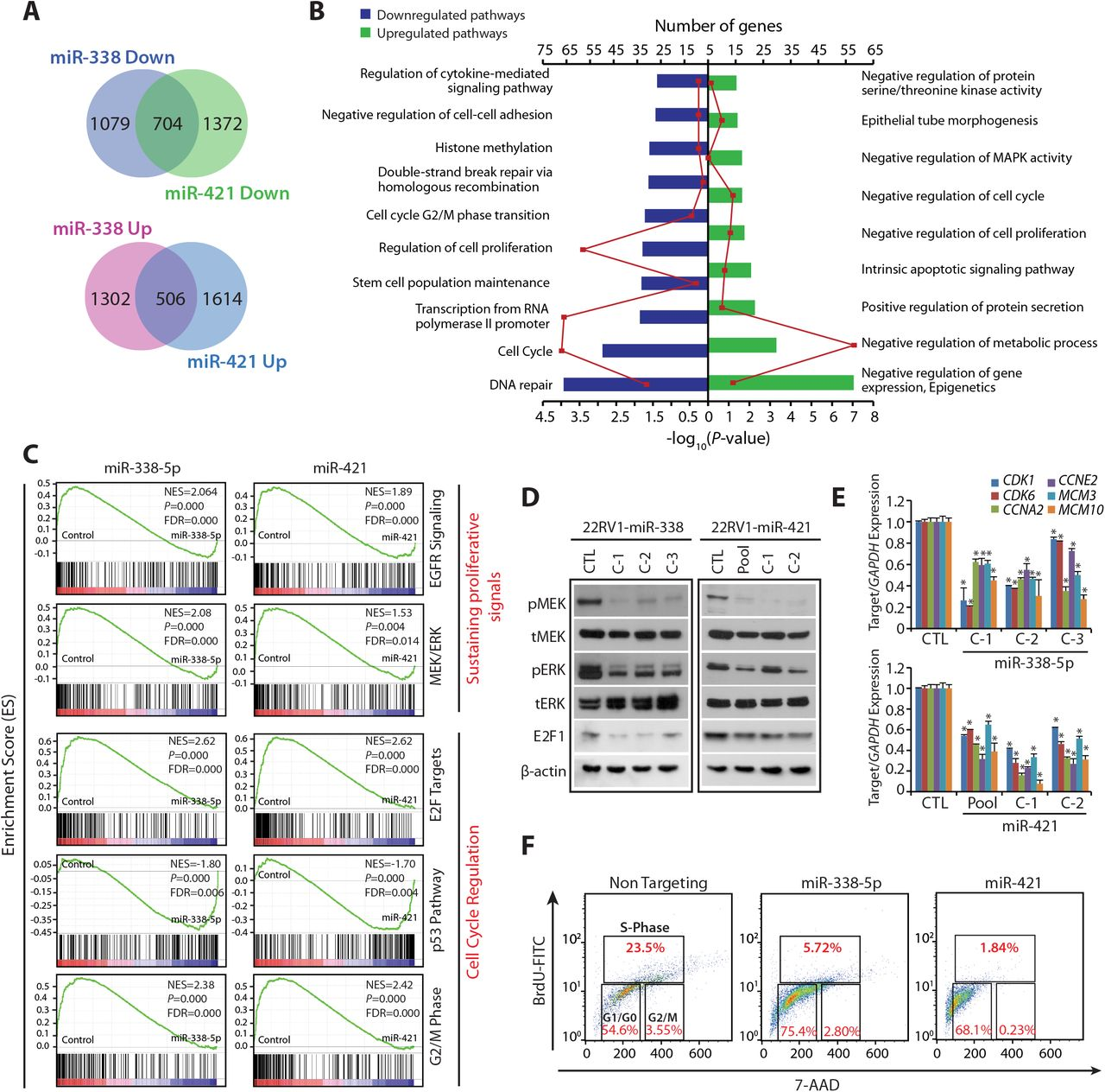 Polycomb Group protein EZH2-mediated transcriptional