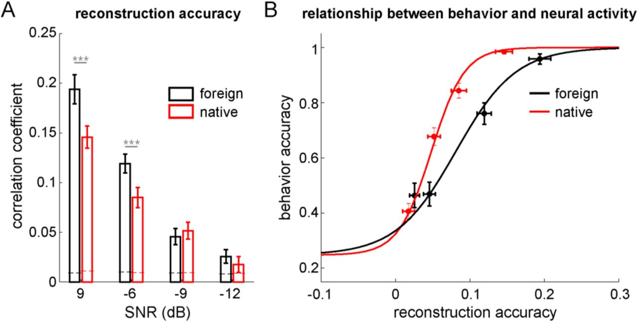 Auditory and Language Contributions to Neural Encoding of