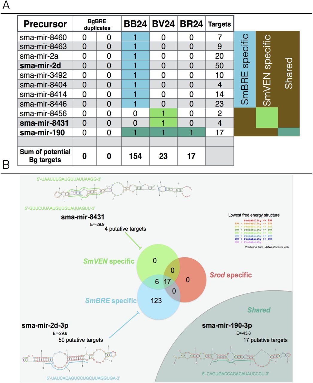 Sympatric and allopatric evolutionary contexts shape differential immune  response in 2 Biomphalaria / Schistosoma interaction | bioRxiv