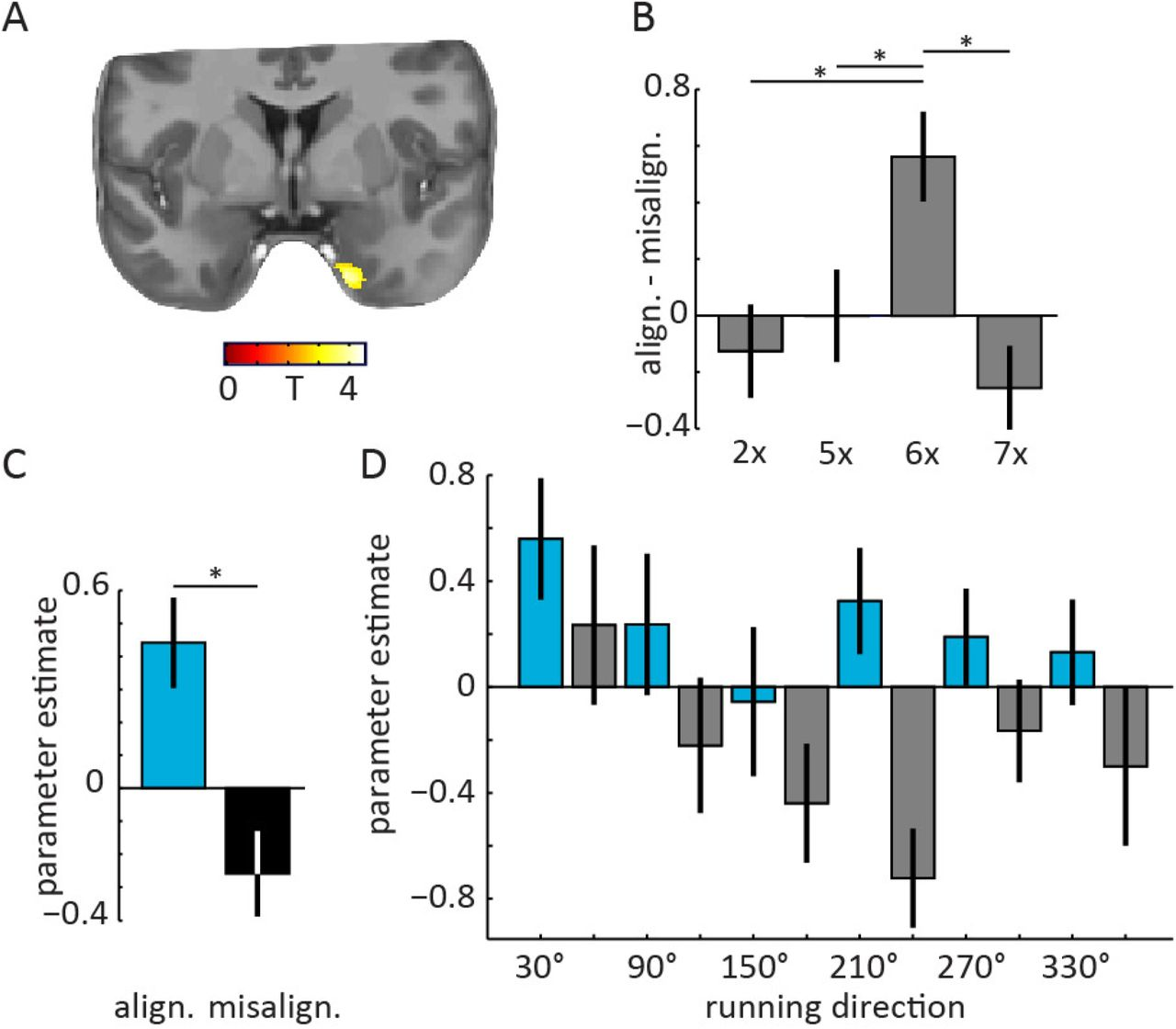 Entorhinal cortex minimises uncertainty for optimal behaviour | bioRxiv