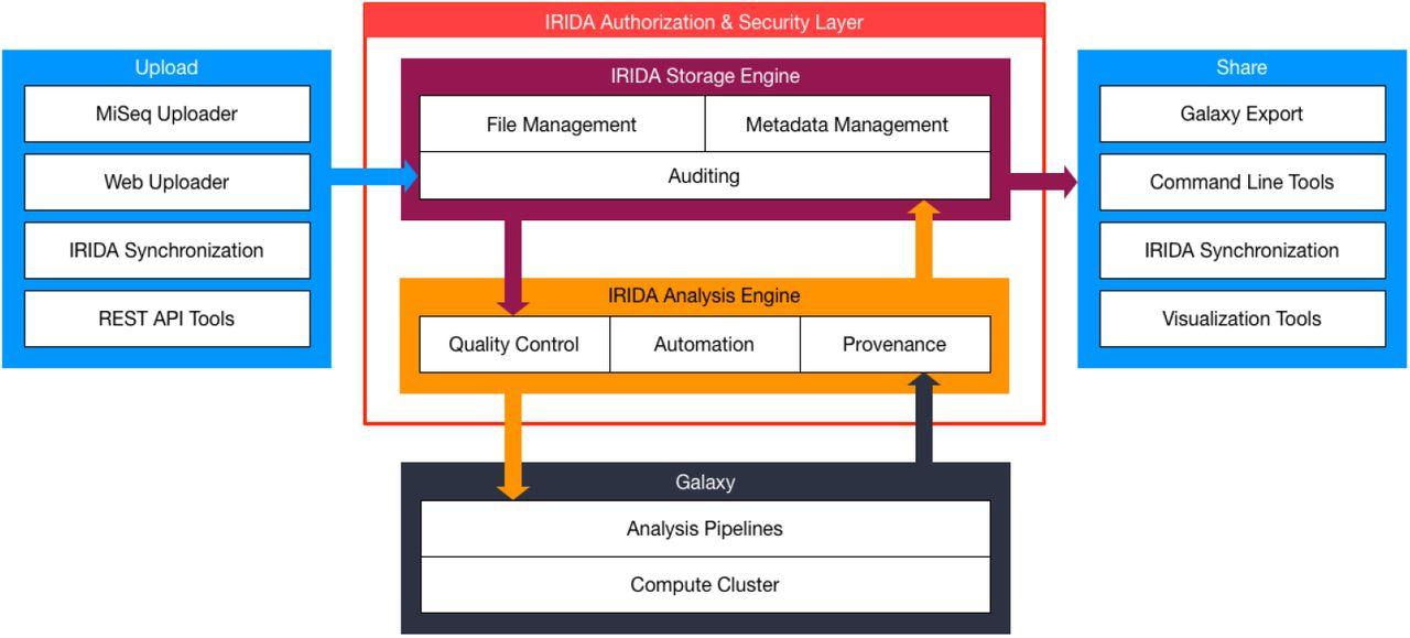 The Integrated Rapid Infectious Disease Analysis (IRIDA