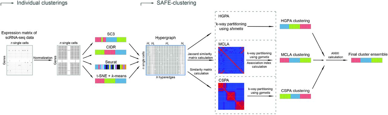 SAFE-clustering: Single-cell Aggregated (From Ensemble