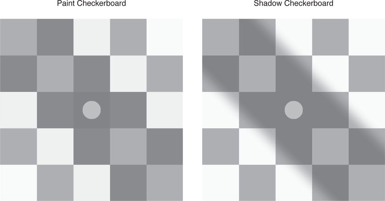 Neuronal population mechanisms of lightness perception | bioRxiv