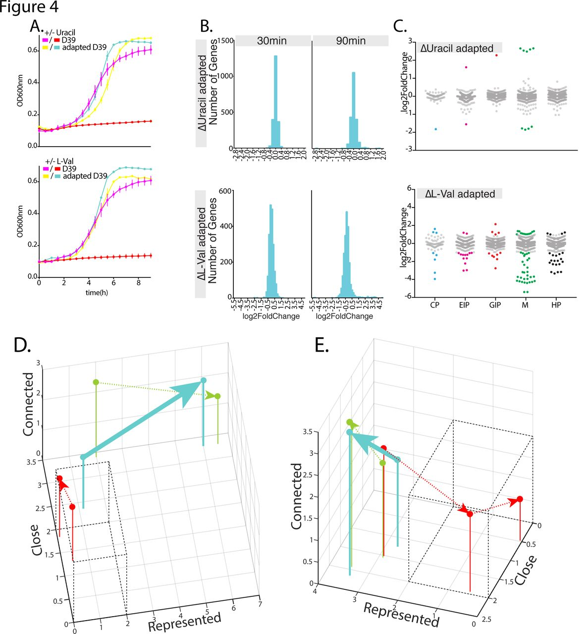 Forecasting bacterial survival-success and adaptive evolution