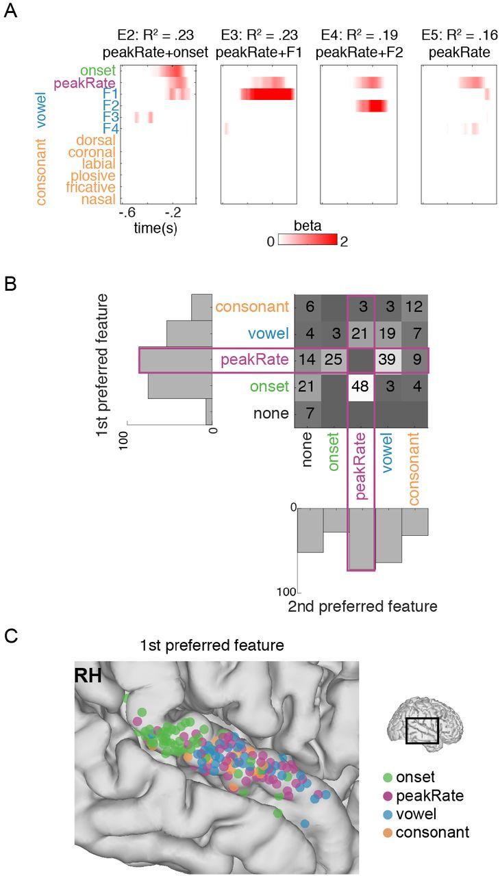 A speech envelope landmark for syllable encoding in human