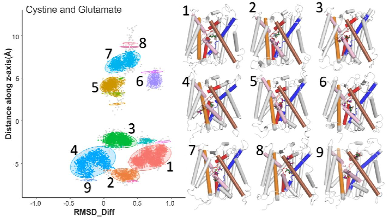 Atomic-level characterization of conformational transition