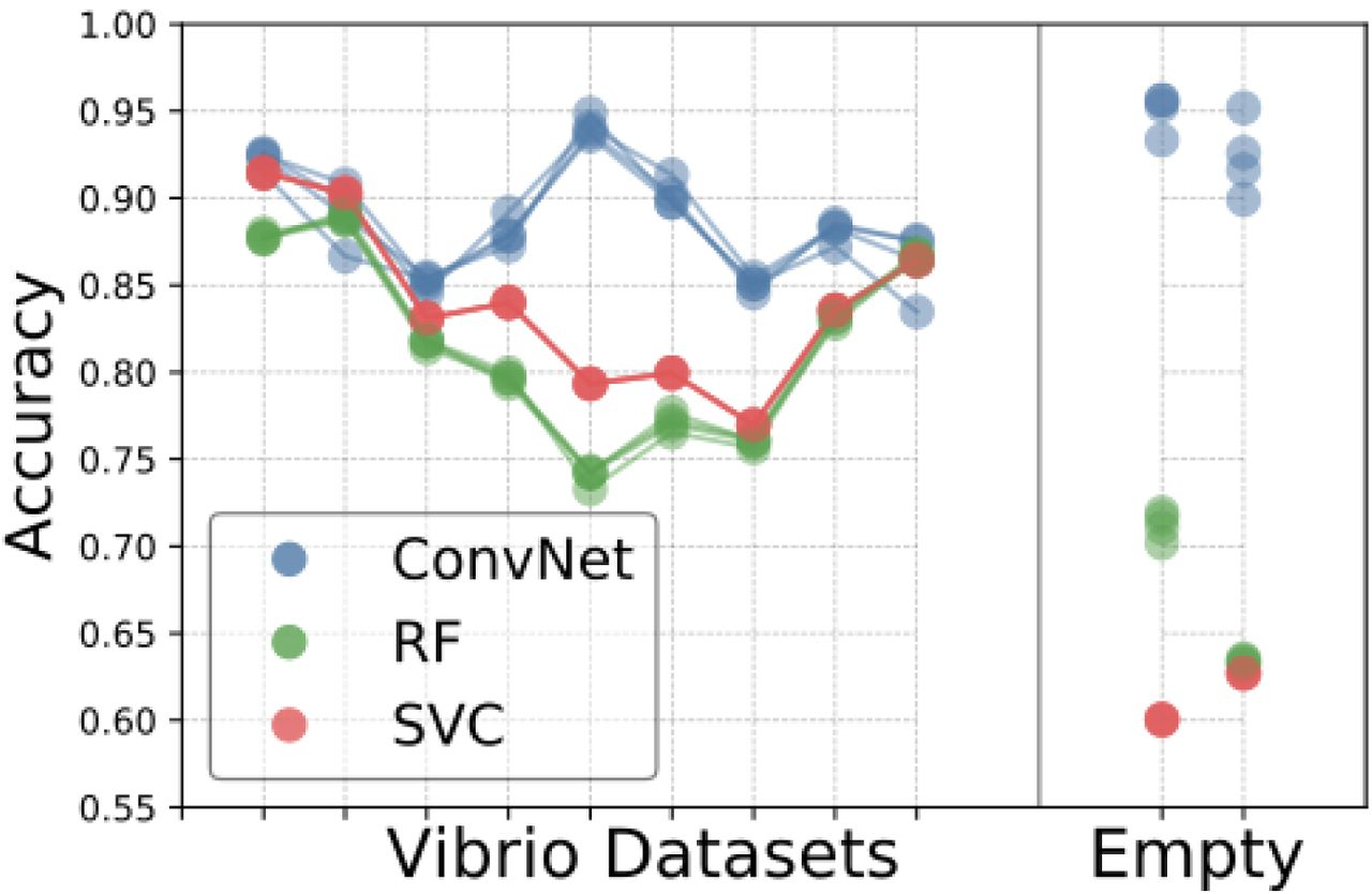Performance of convolutional neural networks for identification of