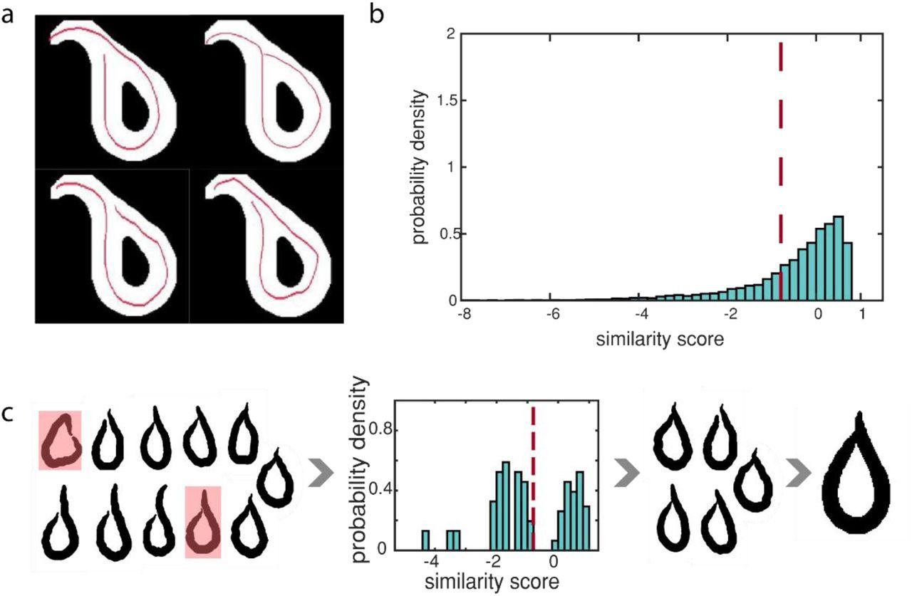 Fast, versatile, and quantitative annotation of complex images | bioRxiv
