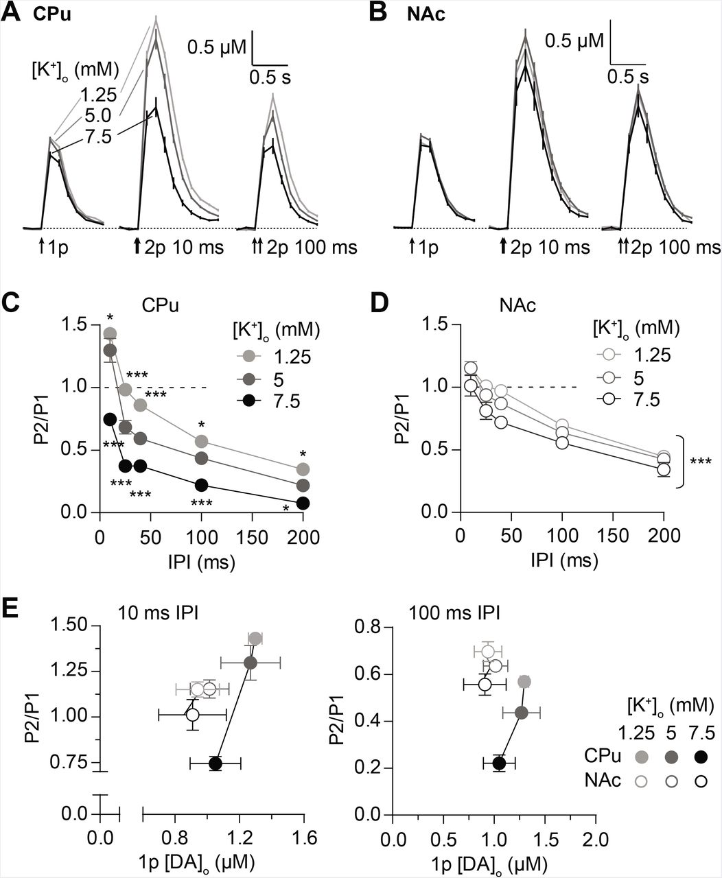 Plasticity in striatal dopamine release is governed by