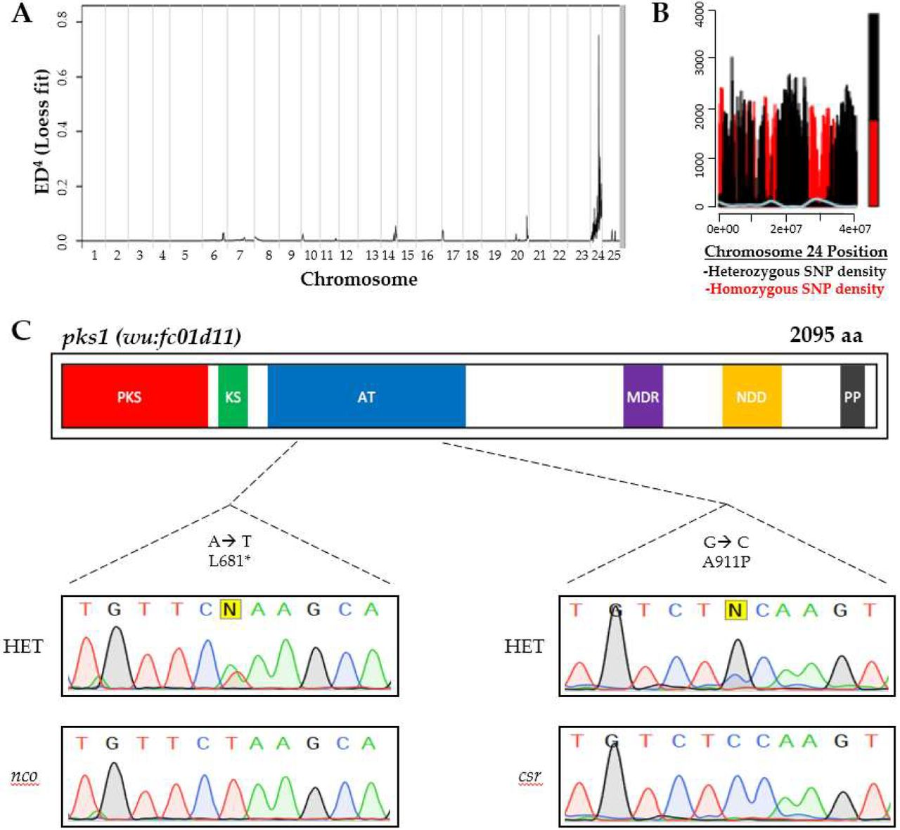 Zebrafish Otolith Biomineralization Requires Polyketide