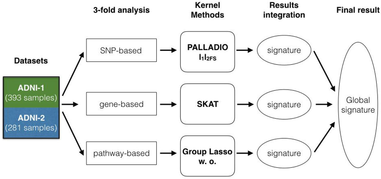 A 3-fold kernel approach for characterizing Late Onset