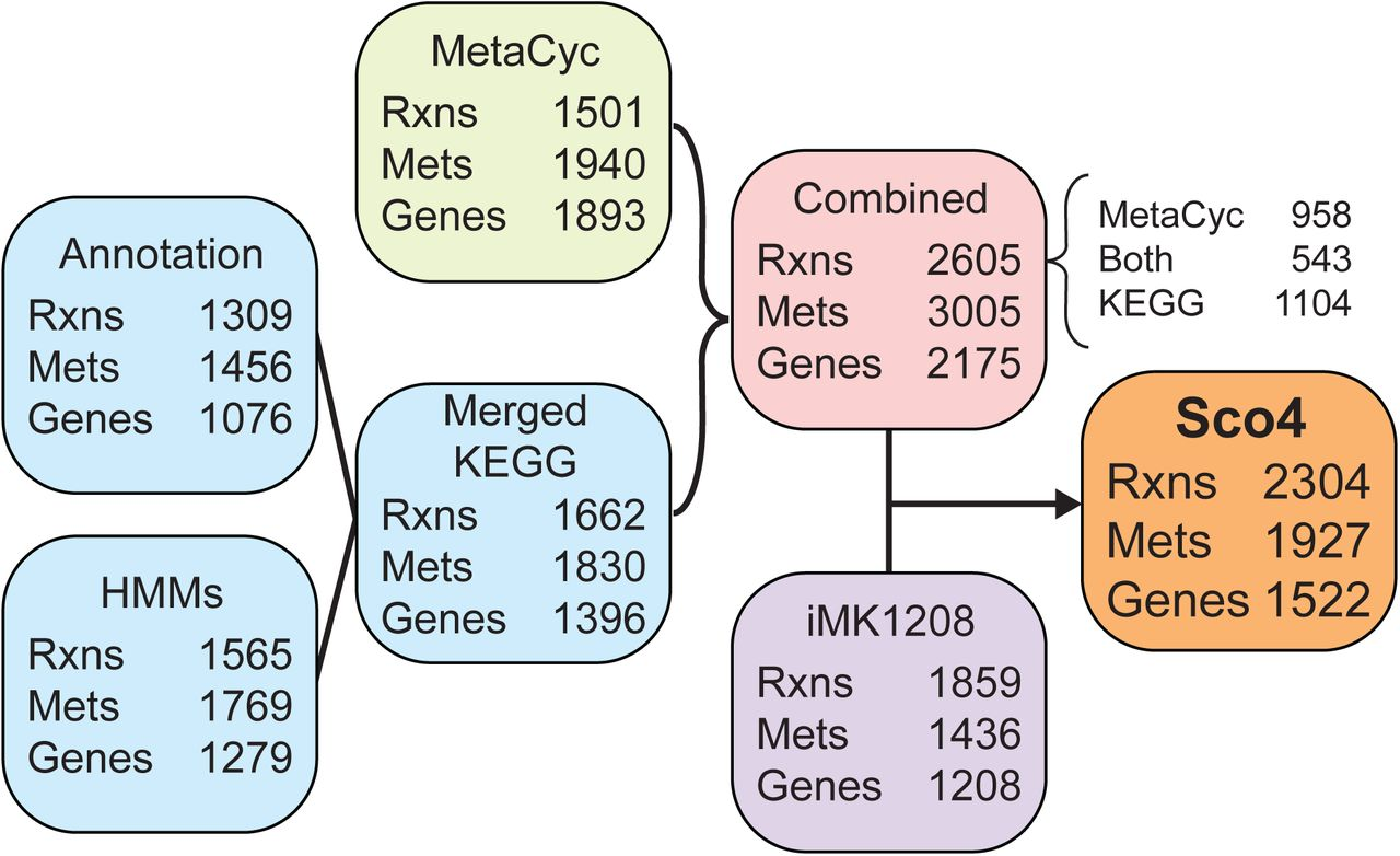 RAVEN 2 0: a versatile toolbox for metabolic network