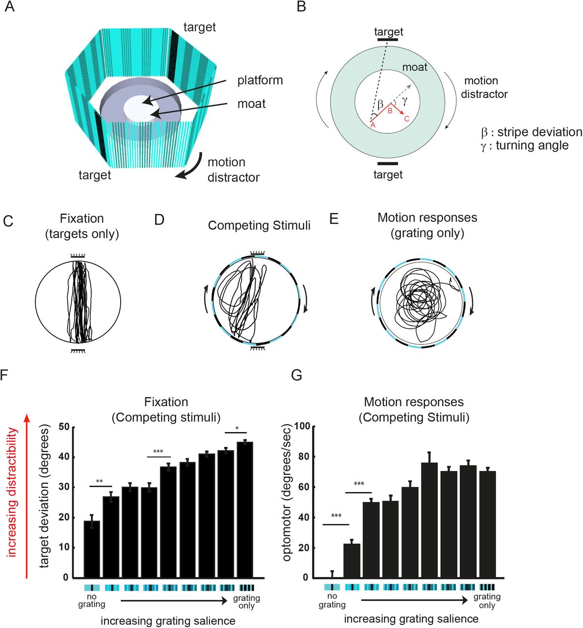 Sleep regulates visual selective attention in Drosophila | bioRxiv