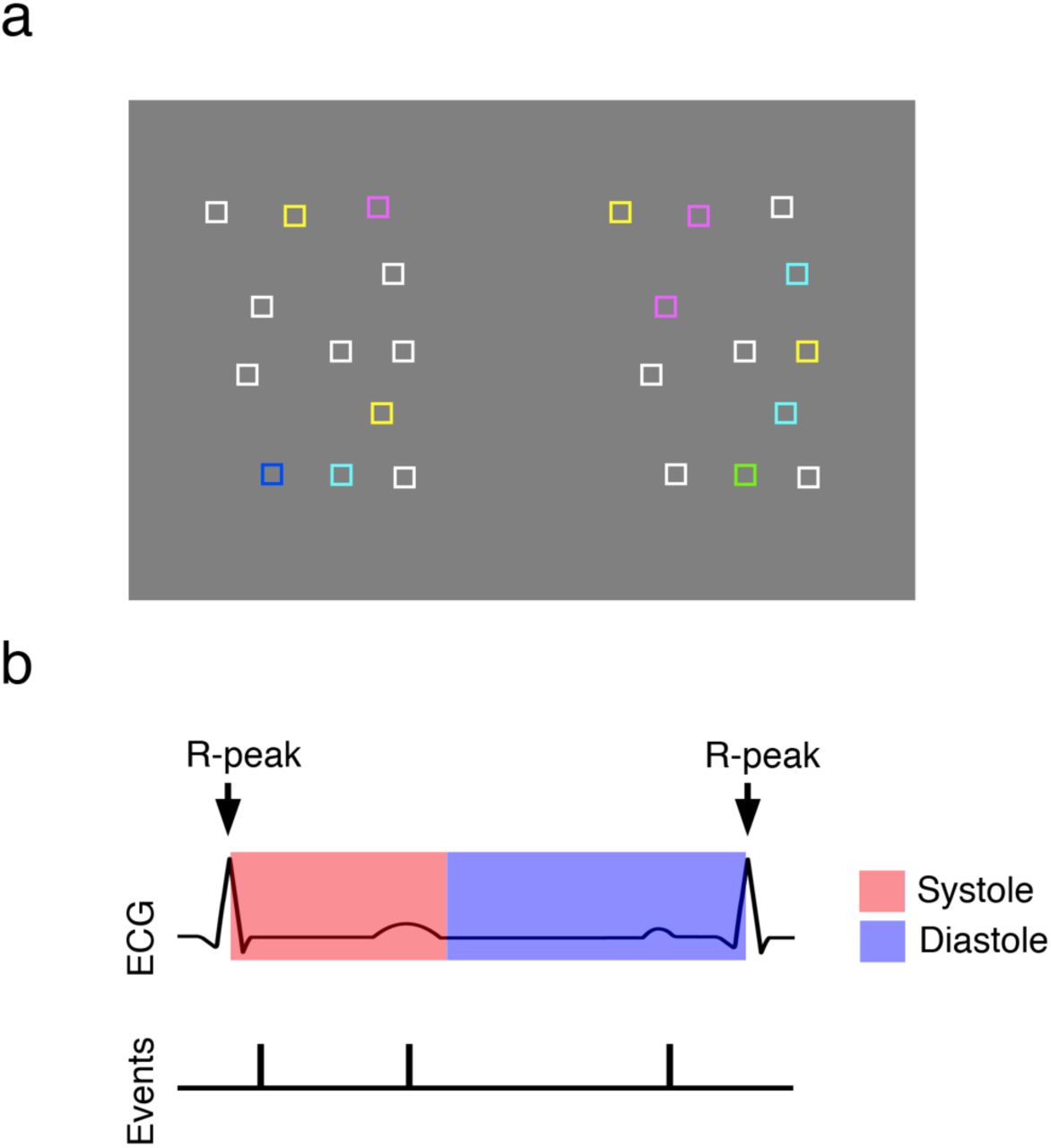 Voluntary visual search is modulated by the cardiac cycle