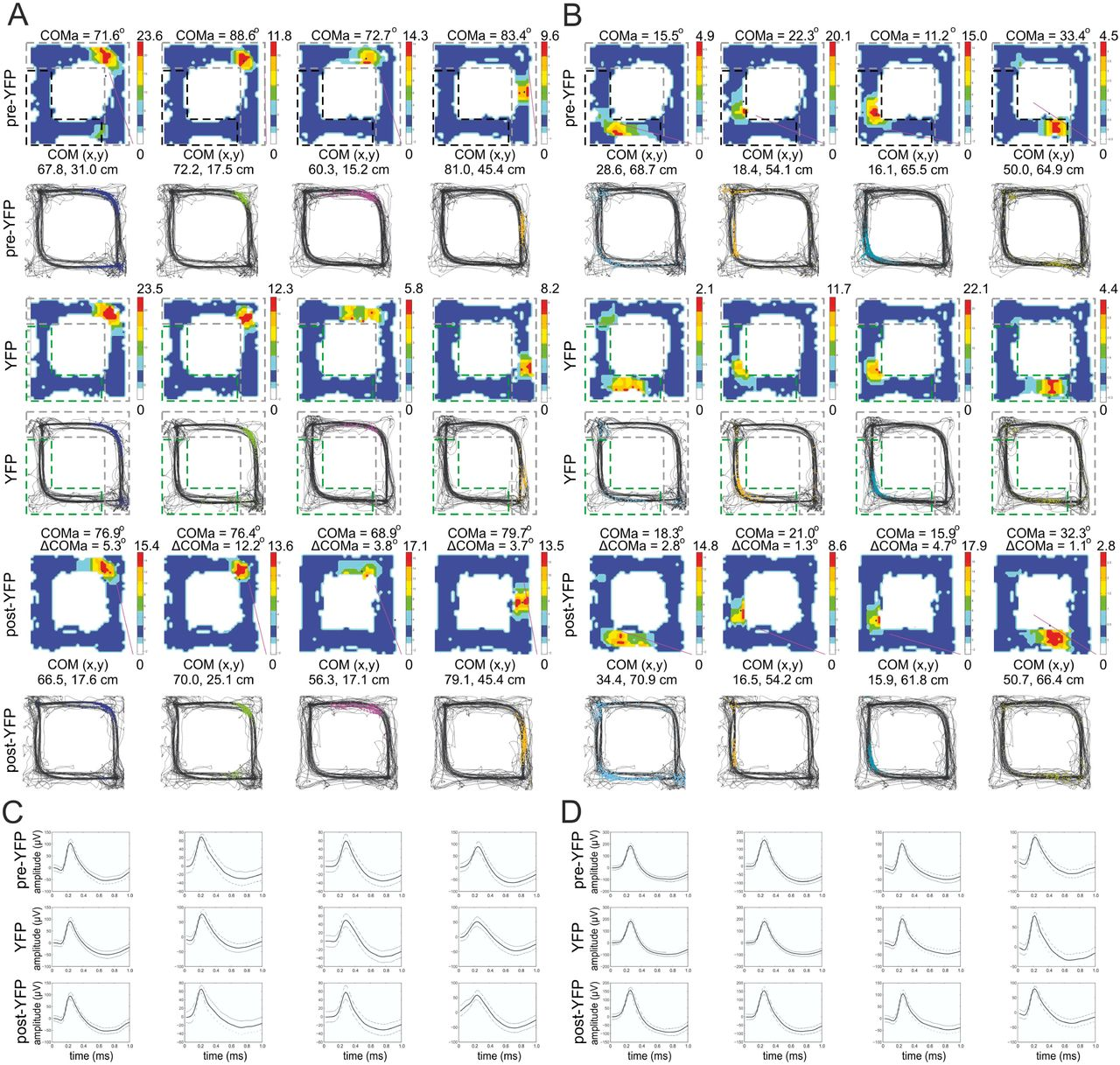 Extra-field activity shifts the place field center of mass to encode