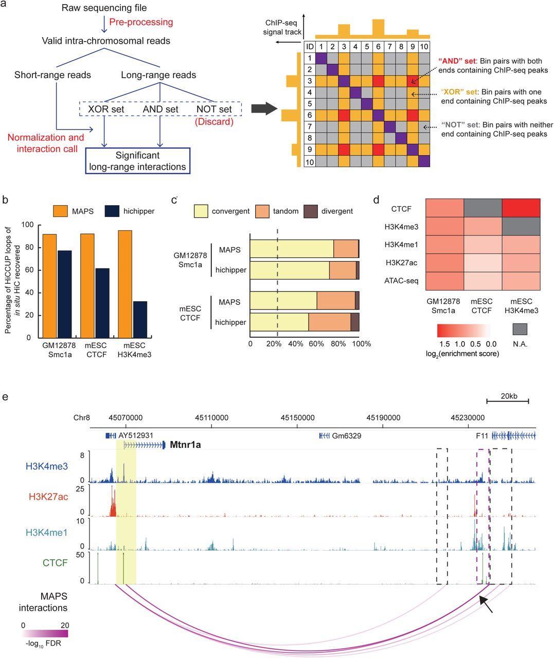 MAPS: model-based analysis of long-range chromatin interactions from