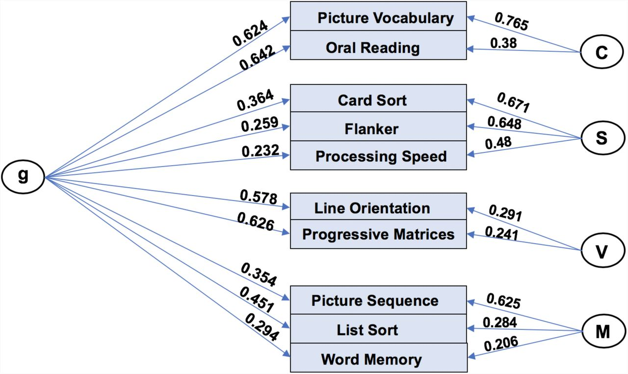 """Towards a """"Treadmill Test"""" for Cognition: Reliable Prediction of"""