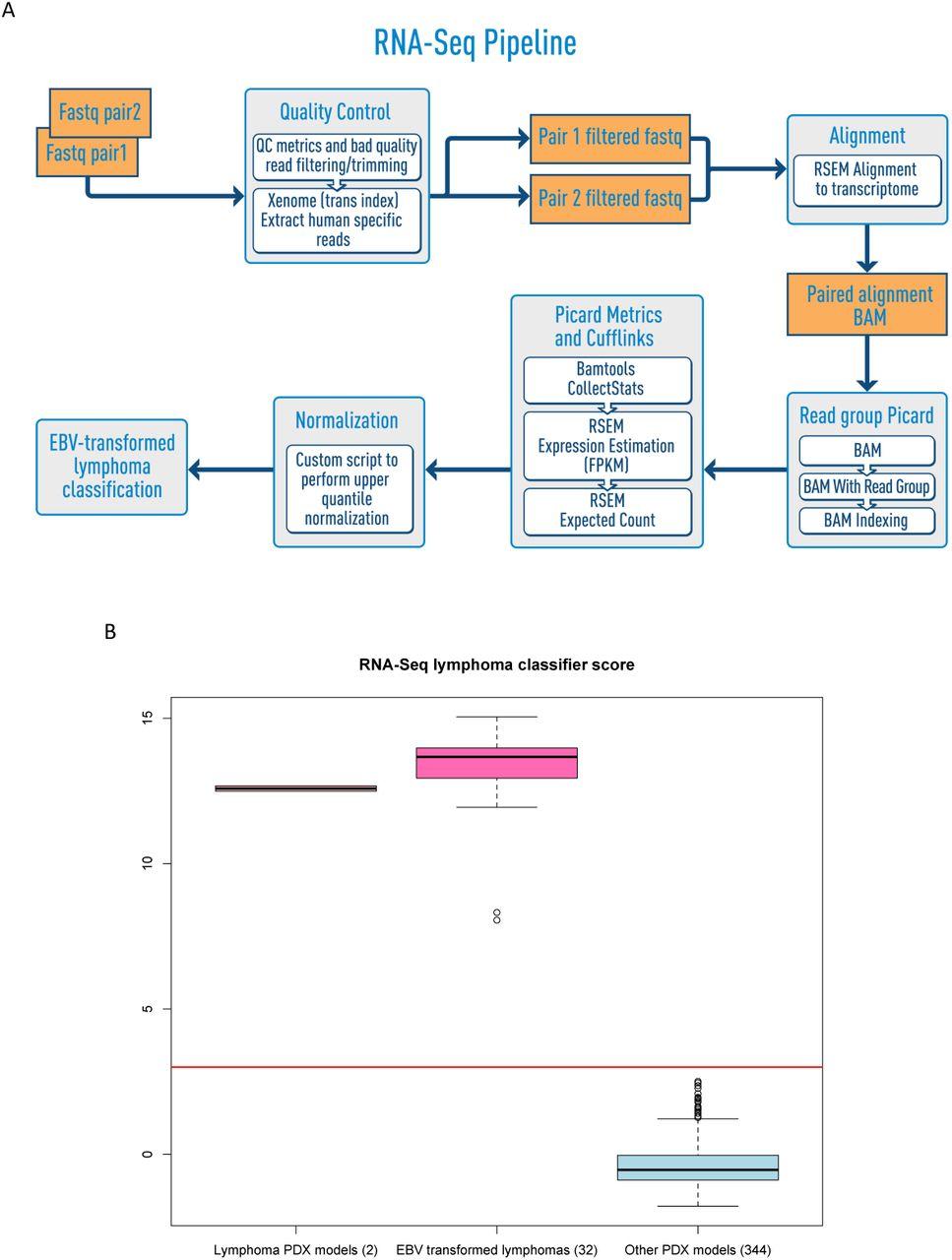 Bioinformatics workflows for genomic analysis of tumors from