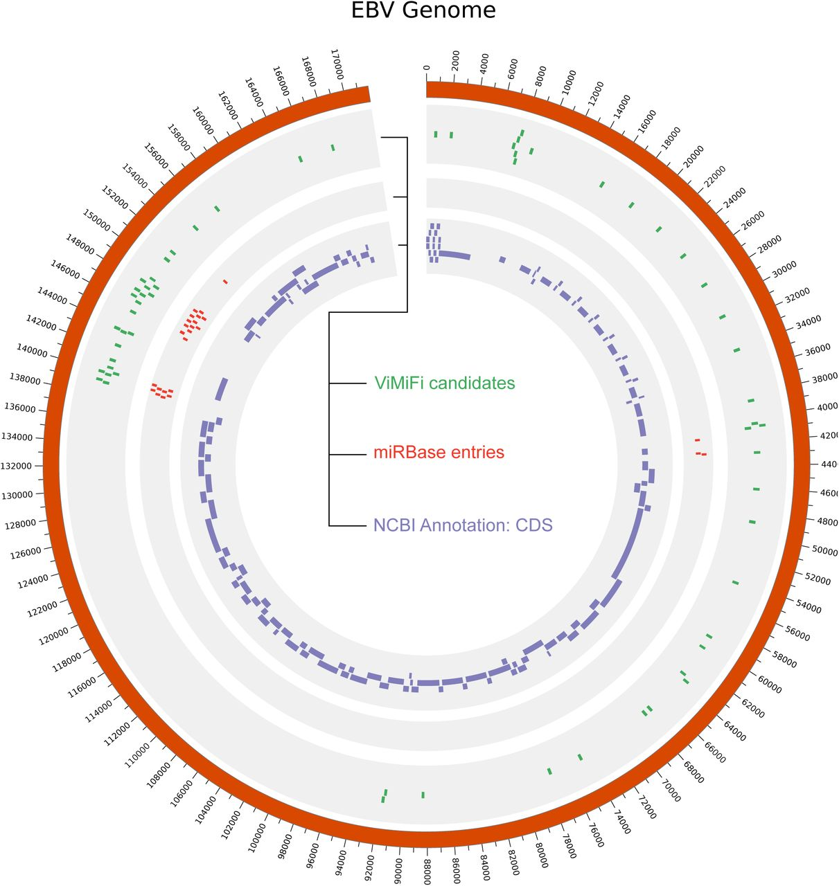 Identification of potential microRNAs associated with