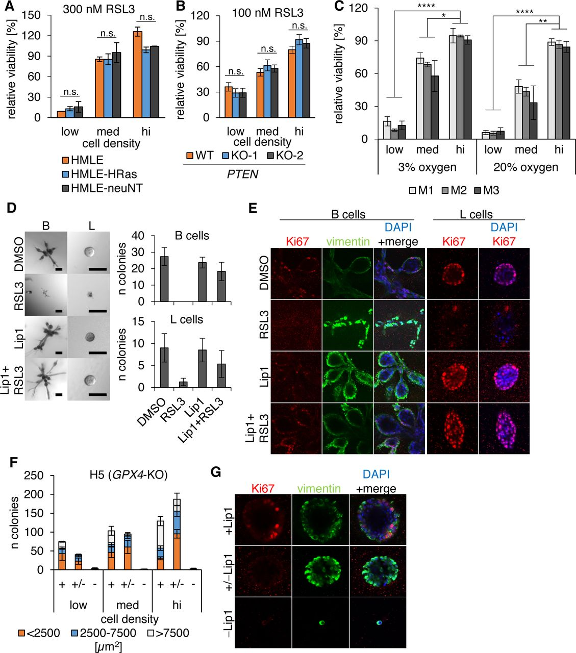 A cell-density dependent metabolic switch sensitizes breast cancer