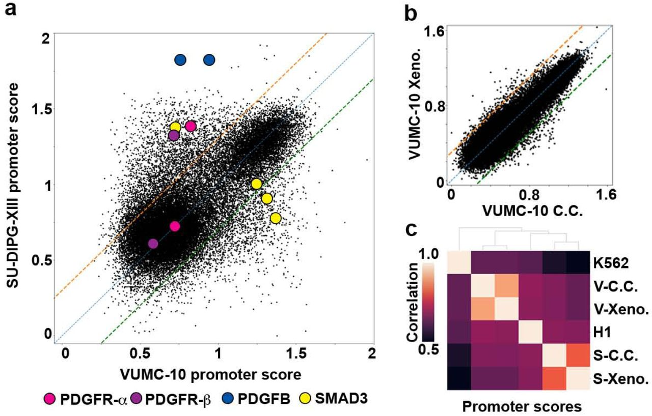 Automated in situ profiling of chromatin modifications resolves cell