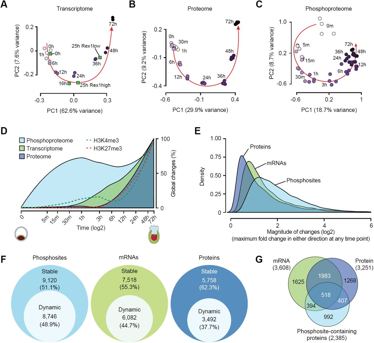Multi-Omic Profiling Reveals Dynamics of the Phased