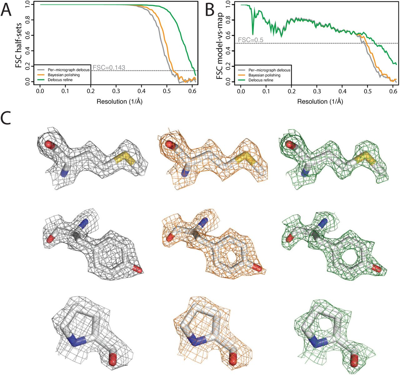 RELION-3: new tools for automated high-resolution cryo-EM