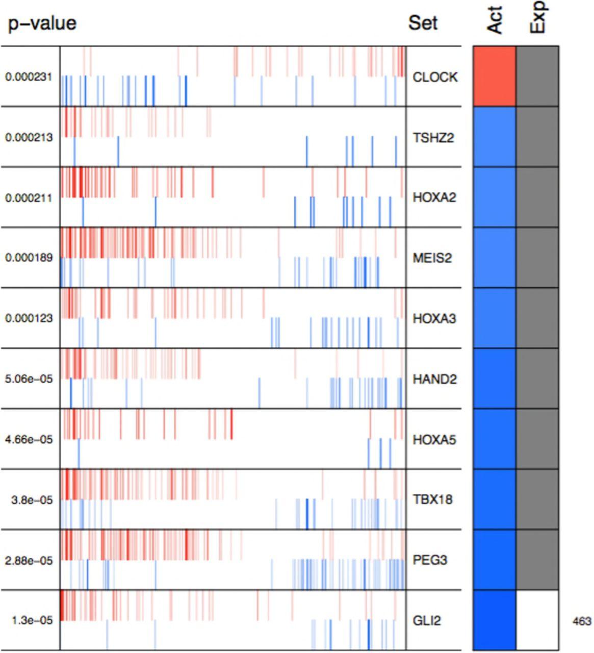 Master regulators of signaling pathways coordinate key