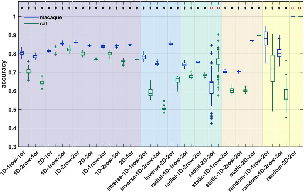 Comprehensive computational modelling of the development of