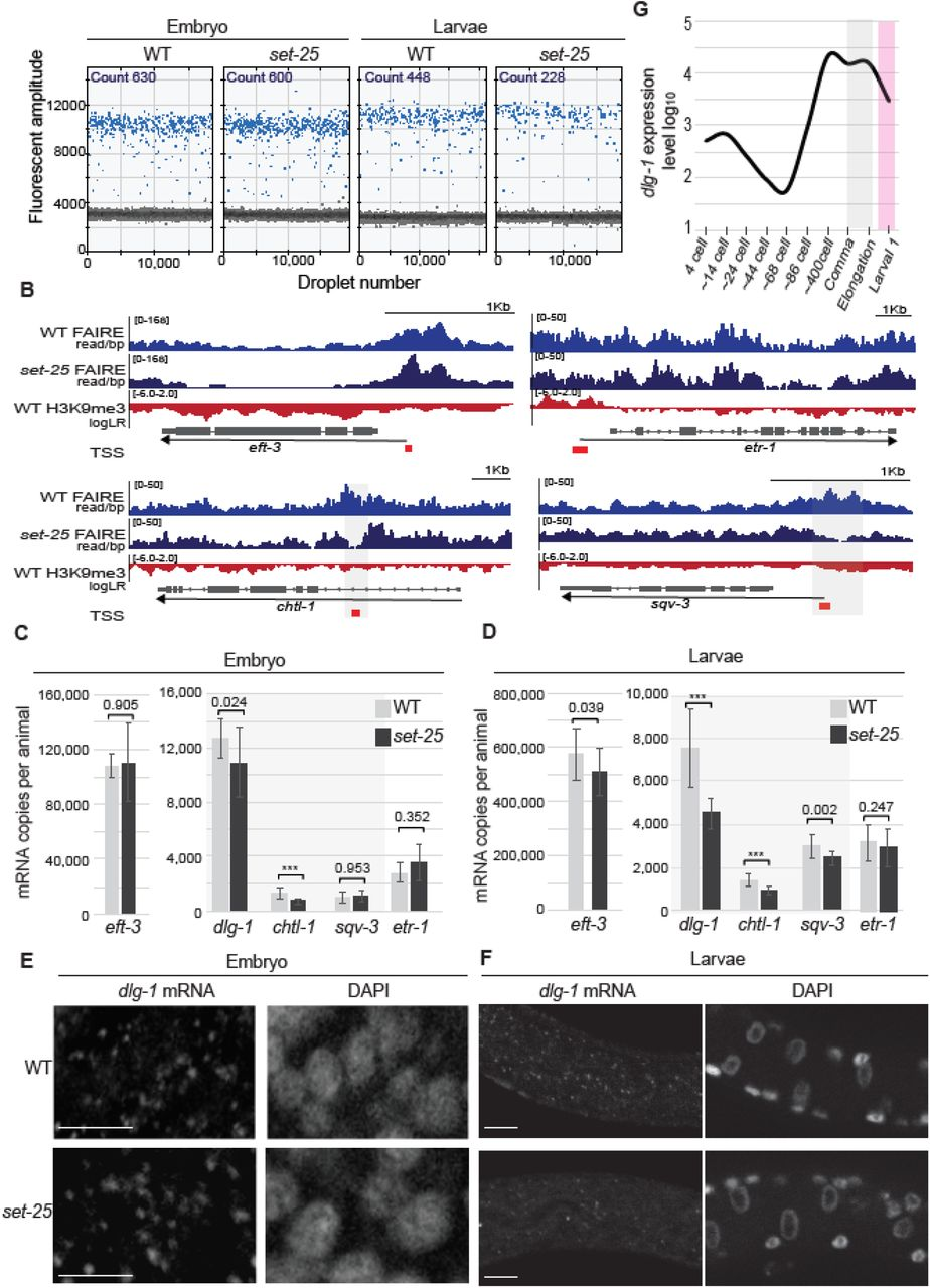 A heterochromatic histone methyltransferase lowers nucleosome