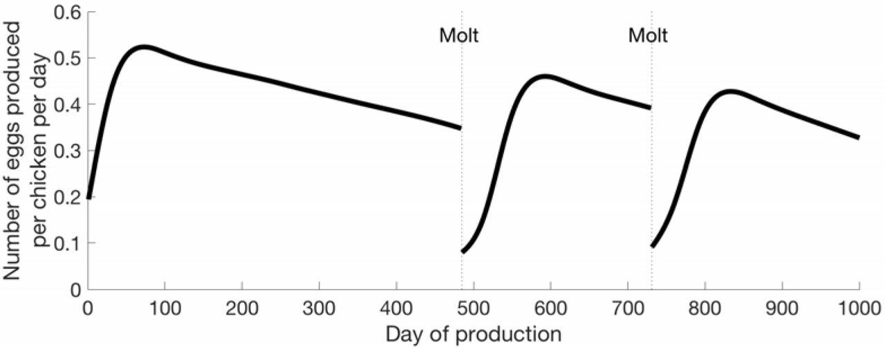 Managing Marek's disease in the egg industry   bioRxiv